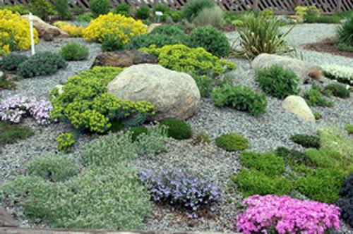 gardens suburban gardens suburban gardens suburban gardens tropical
