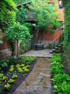 Lush Backyard Oasis