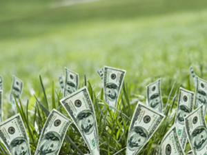 Increased Property Value through Professional Landscaping